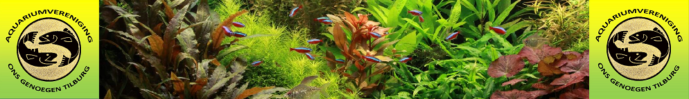 Aquariumvereniging Ons Genoegen